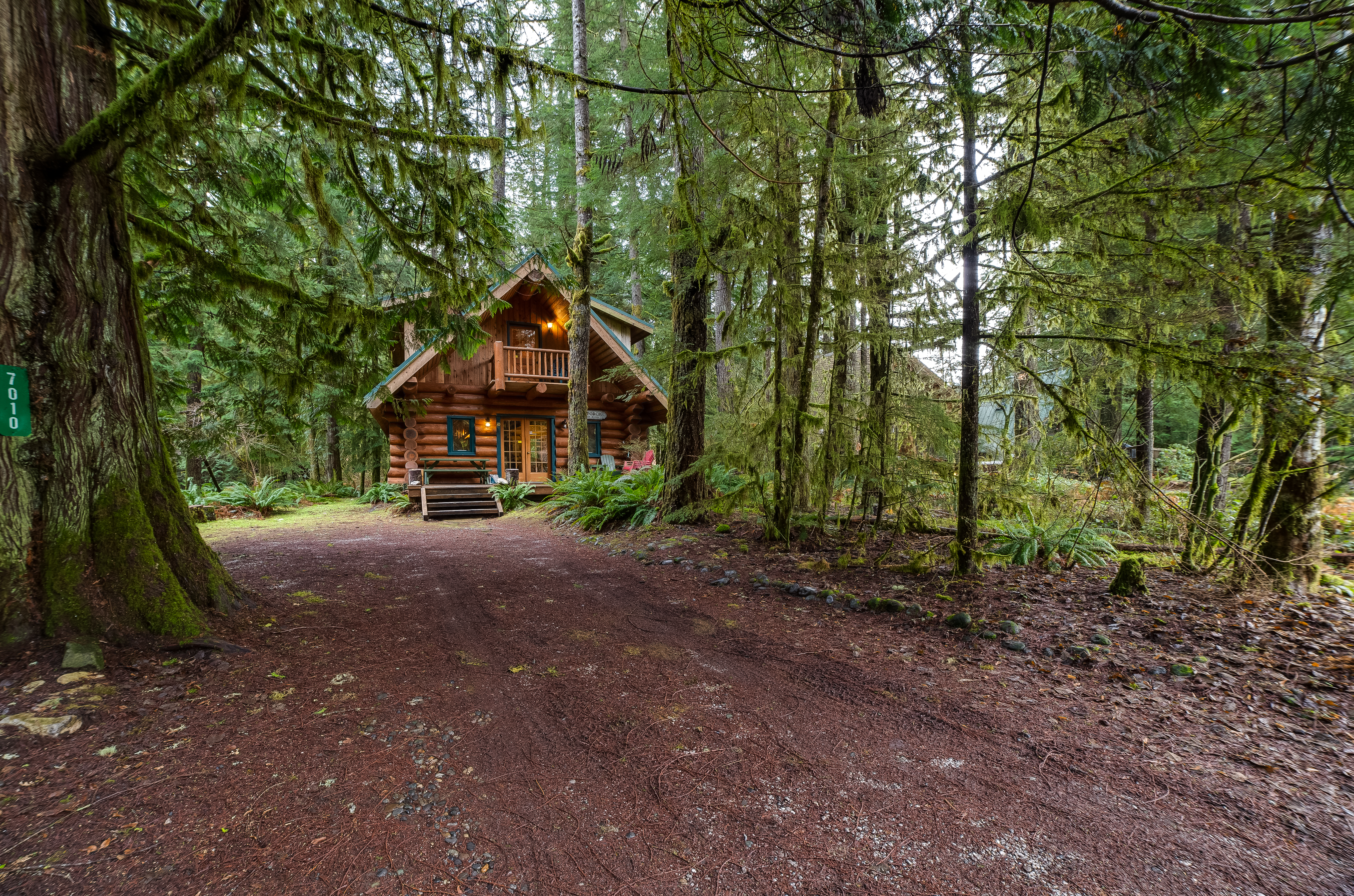 Driveway and front of cabin