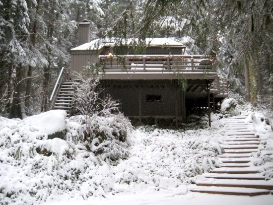 Front of the cabin in the winter