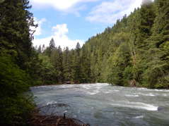 Nooksack River view from the trail of Snowater Community.