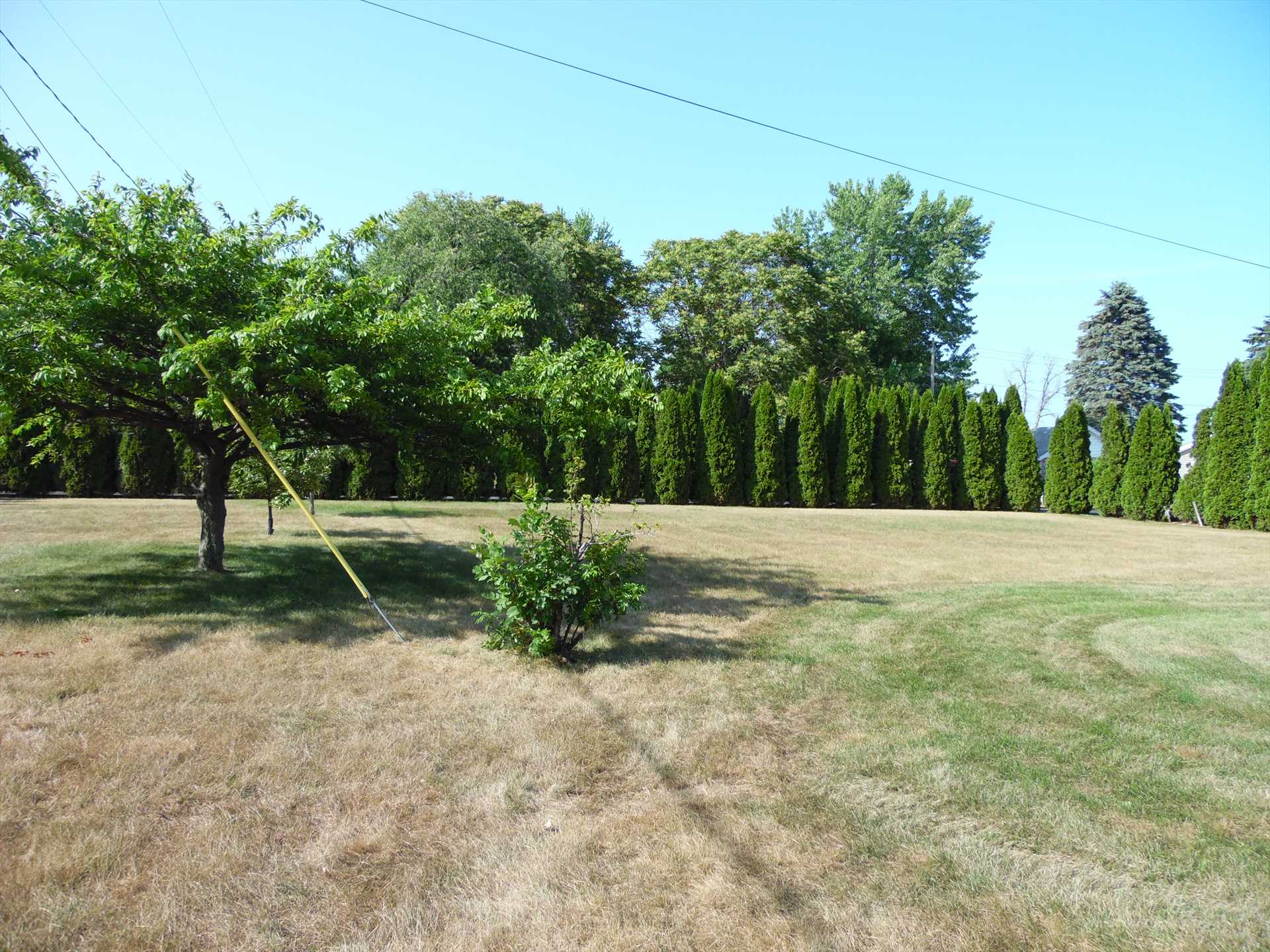 front yard area