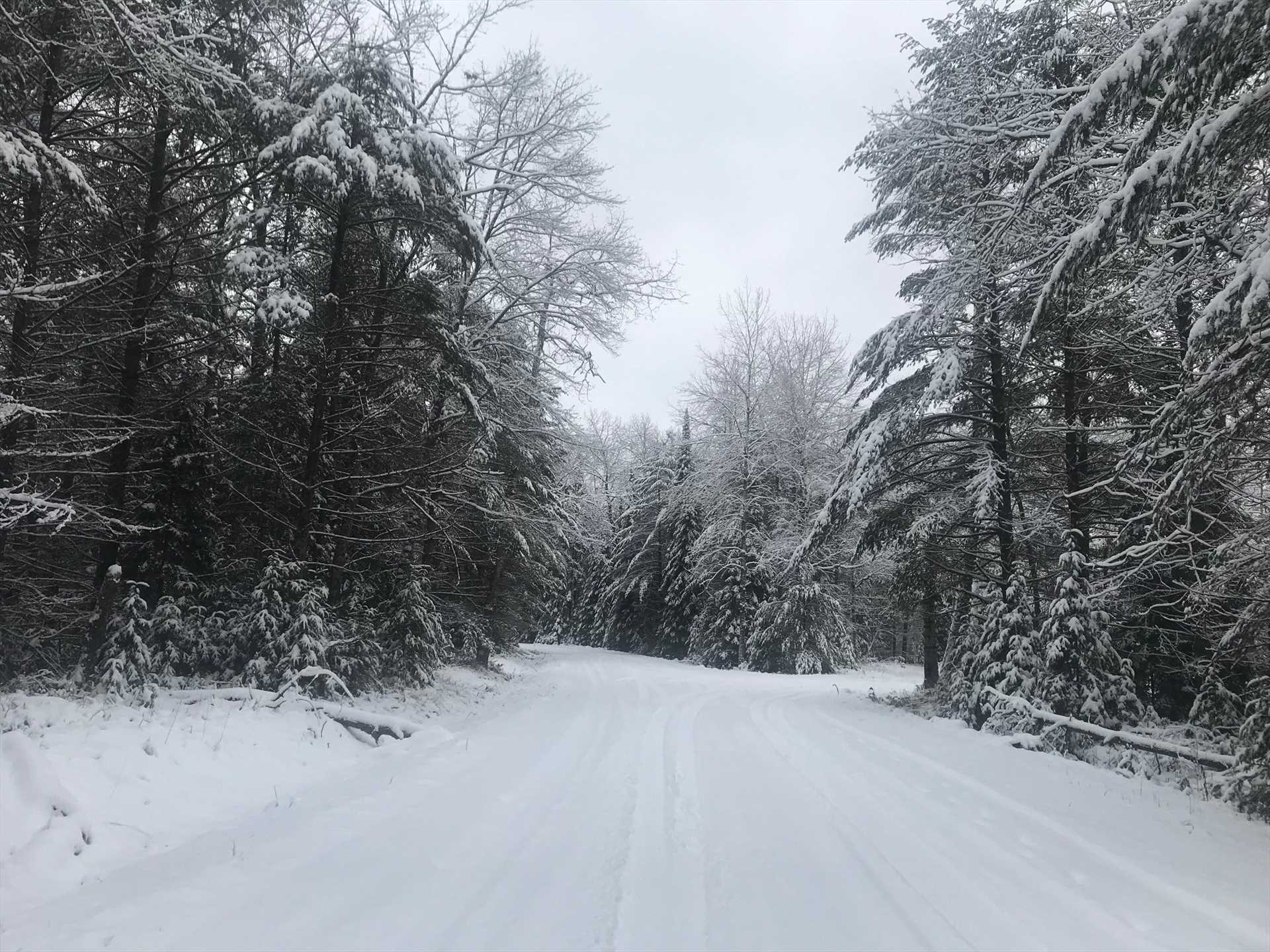 winter road view