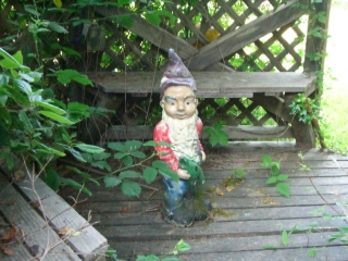 Garden Gnome - one of many