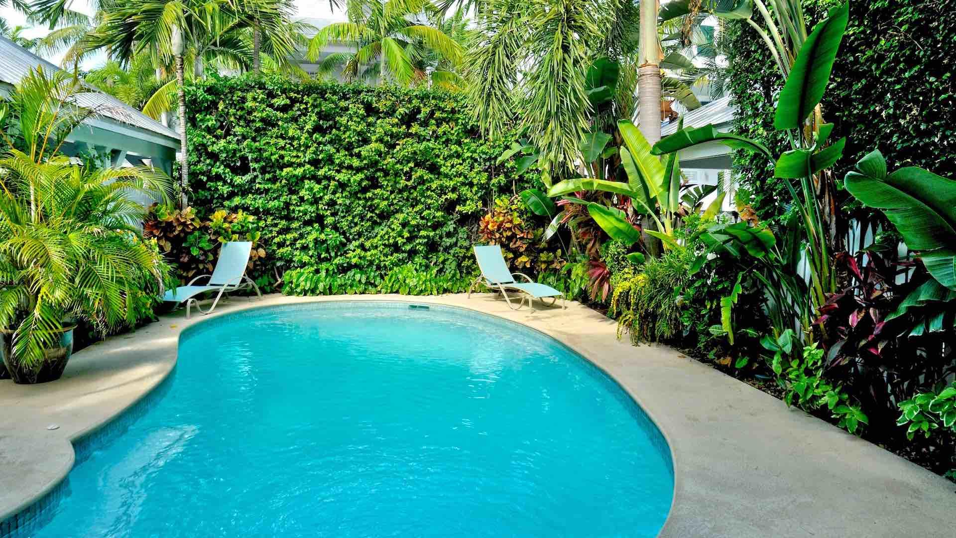 The pool area is completely private...