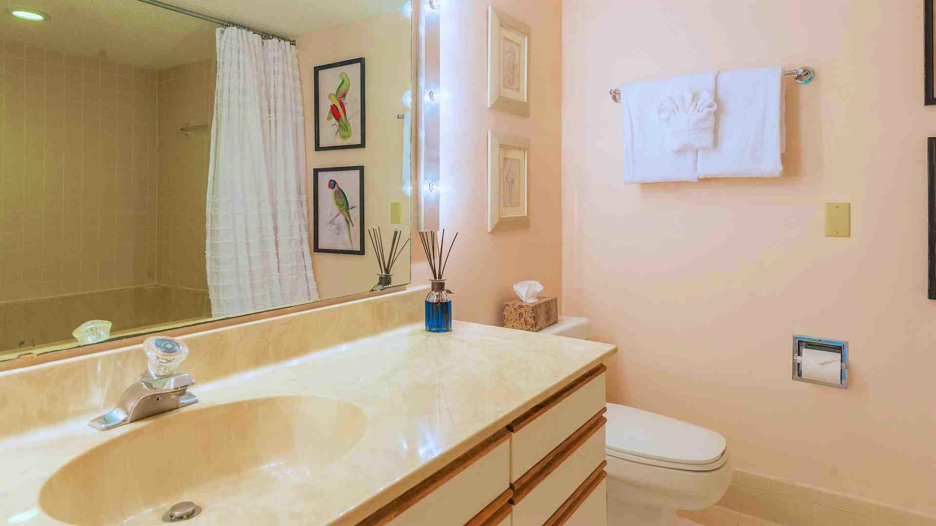 The second room of the master bathroom has a second vanity and commode...