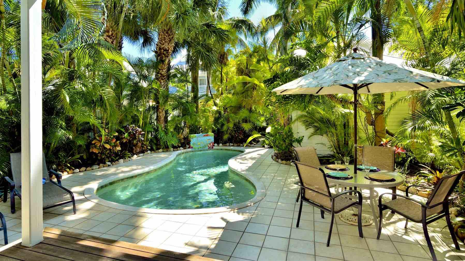 The back yard is your piece of paradise, surrounded by tropical landscaping...