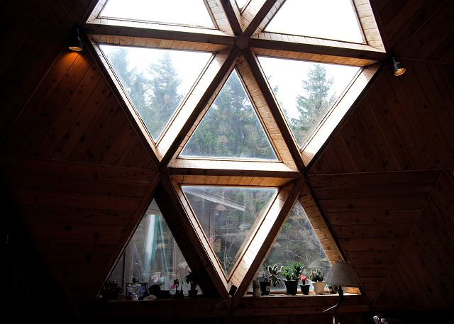 FR-Geodesic Home-Snowshoe-West Virginia-07