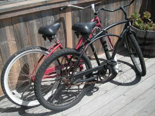 Take out the Beach Cruiser Bicycles for a Ride!