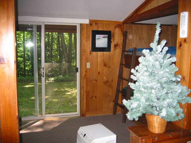 View of yard from family room