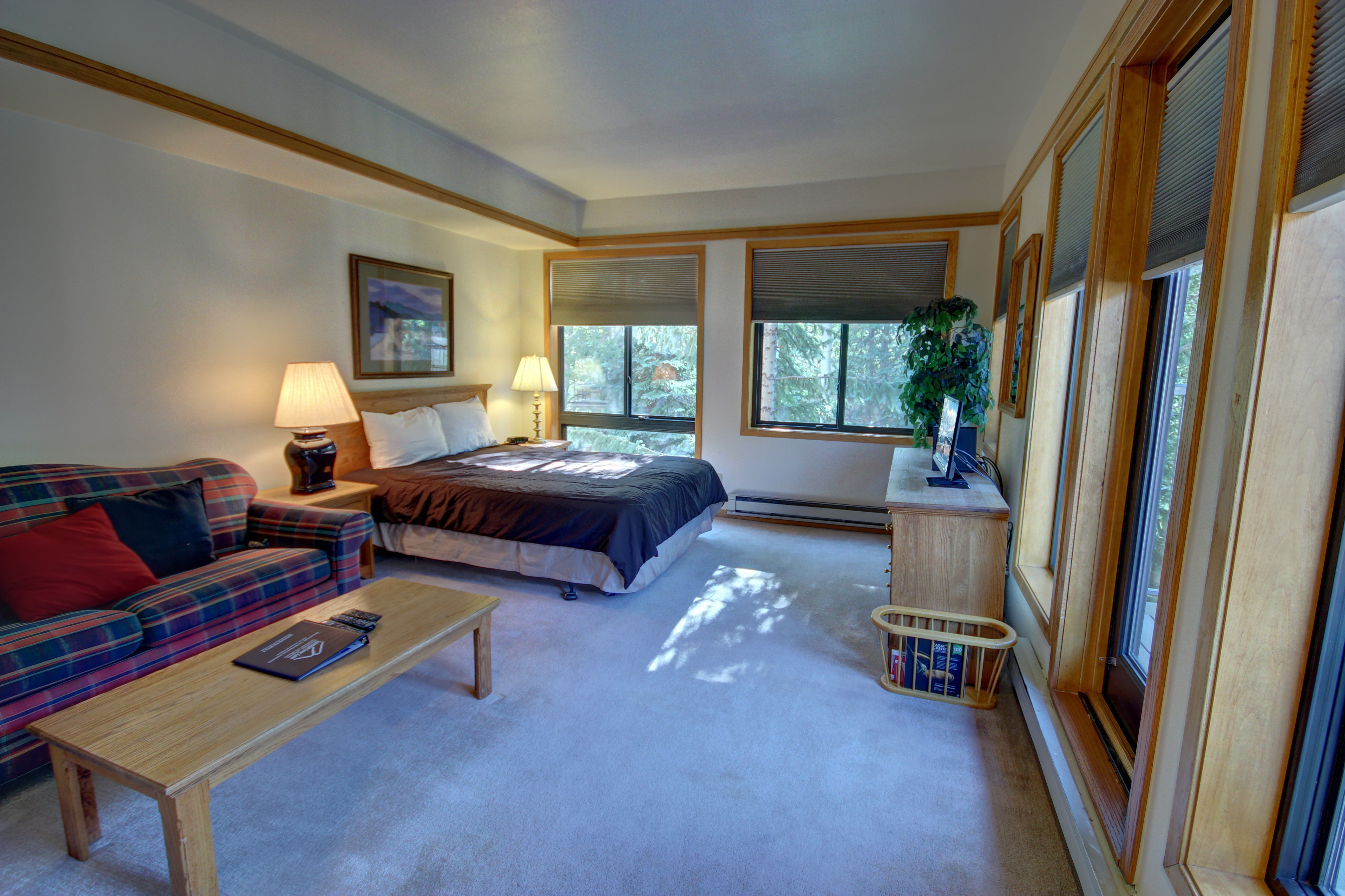 Bedroom and living room with lots of natural light