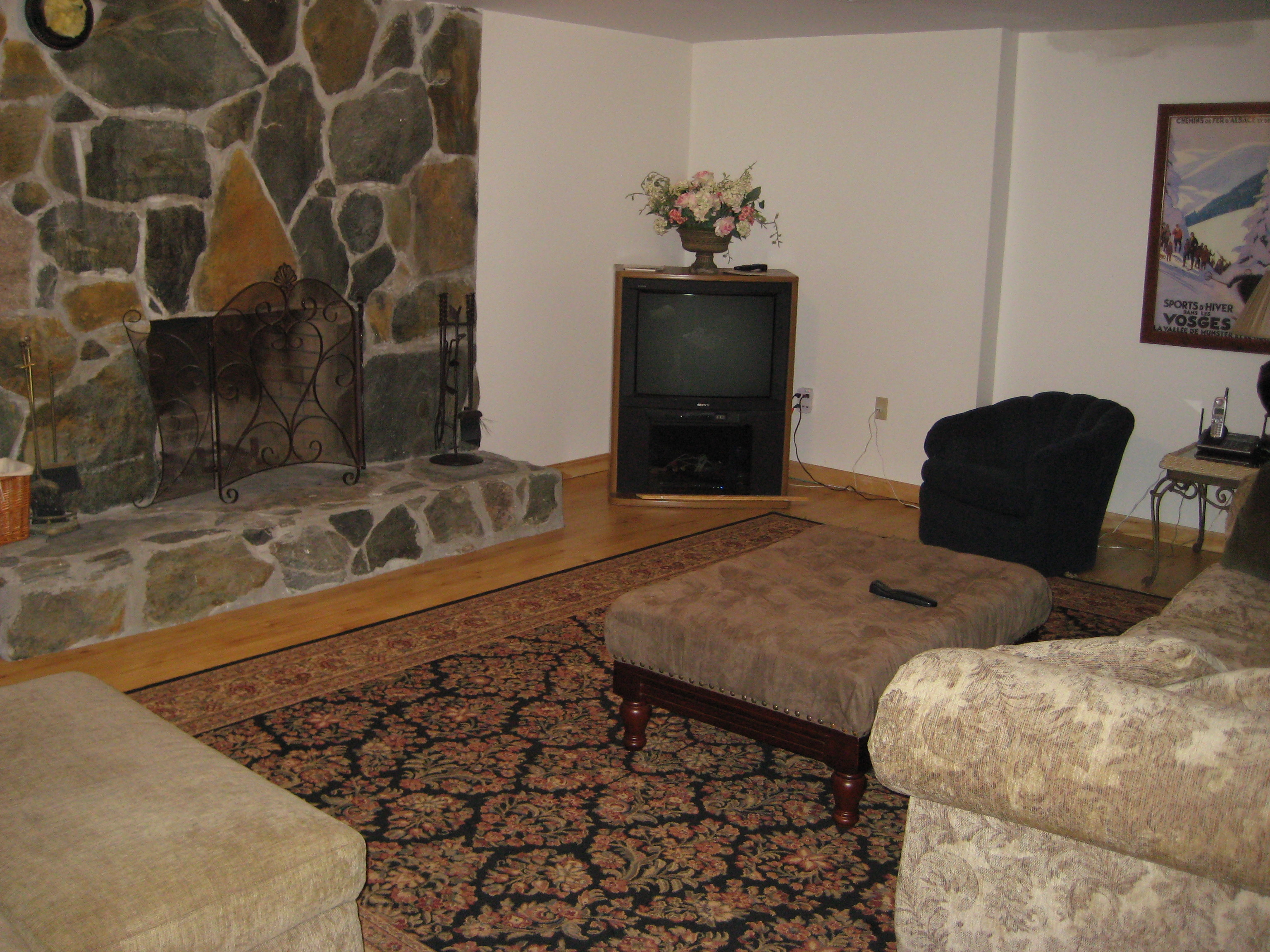 LOWER LEVEL FAMILY ROOM