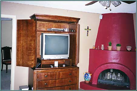 Living Roomw/ bee hive fireplace