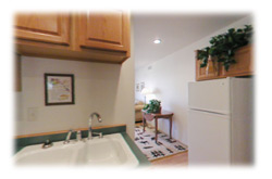 A compact and fully equipped kitchen