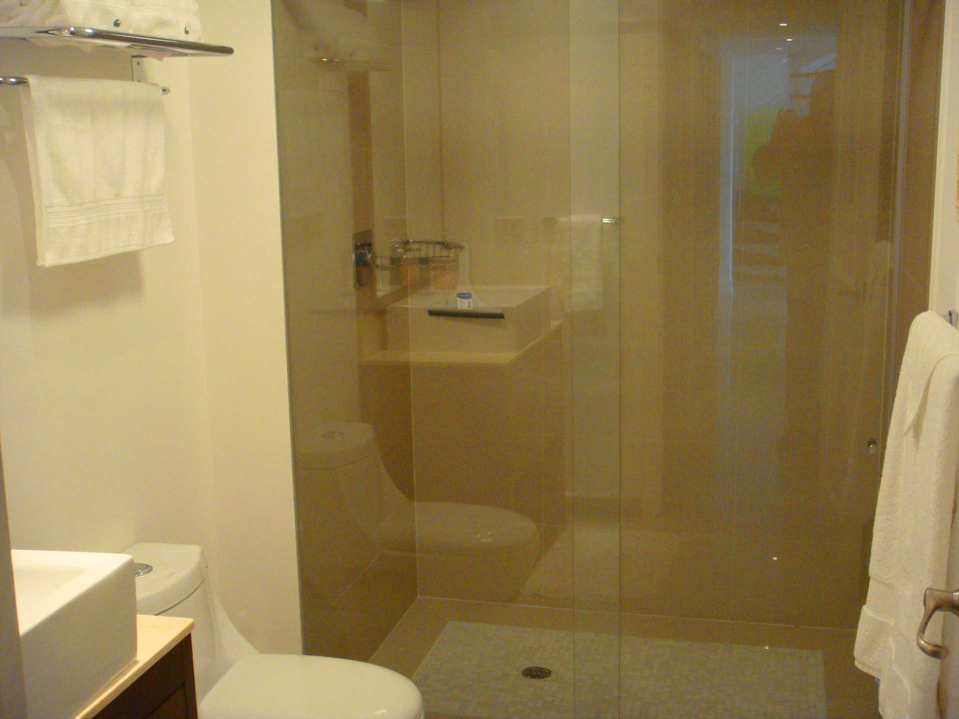 Modern full bathroom with glass-enclosed shower of second master bedroom.