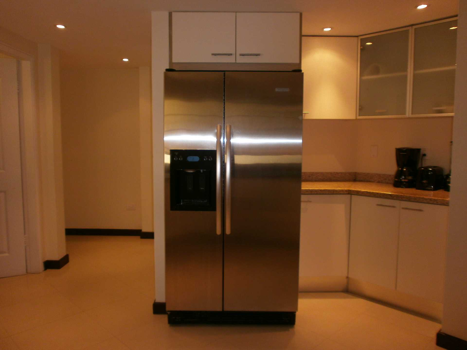 ...including a side-by-side fridge with ice/water dispensers.