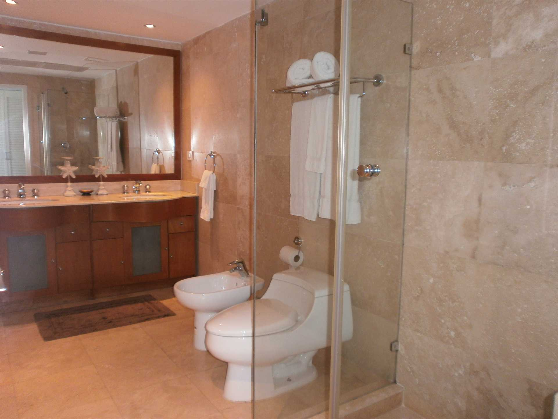 Spacious and modern full master bathroom with glass-enclosed shower.