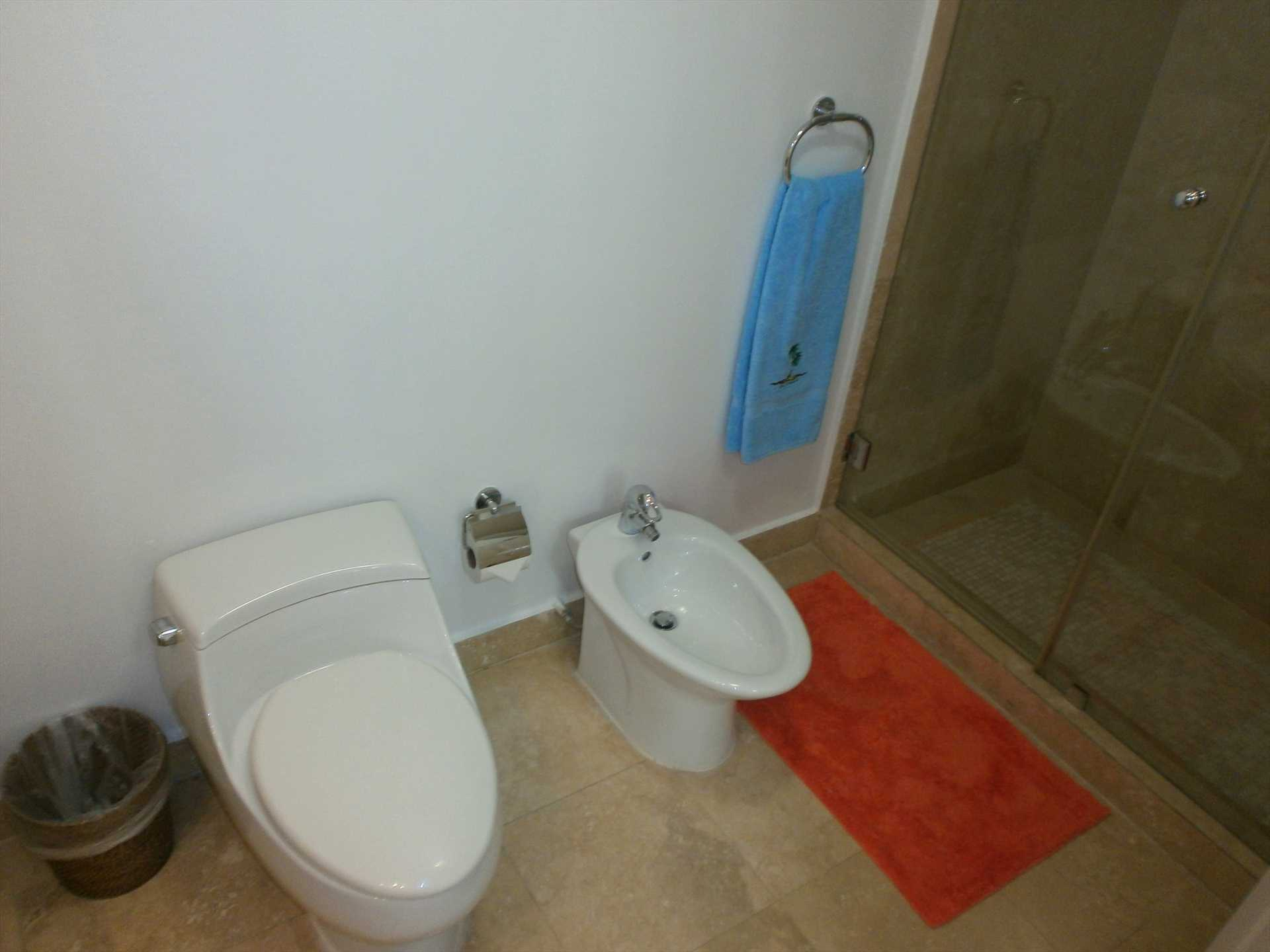 . . ., toilet, bidet and glass-enclosed shower!