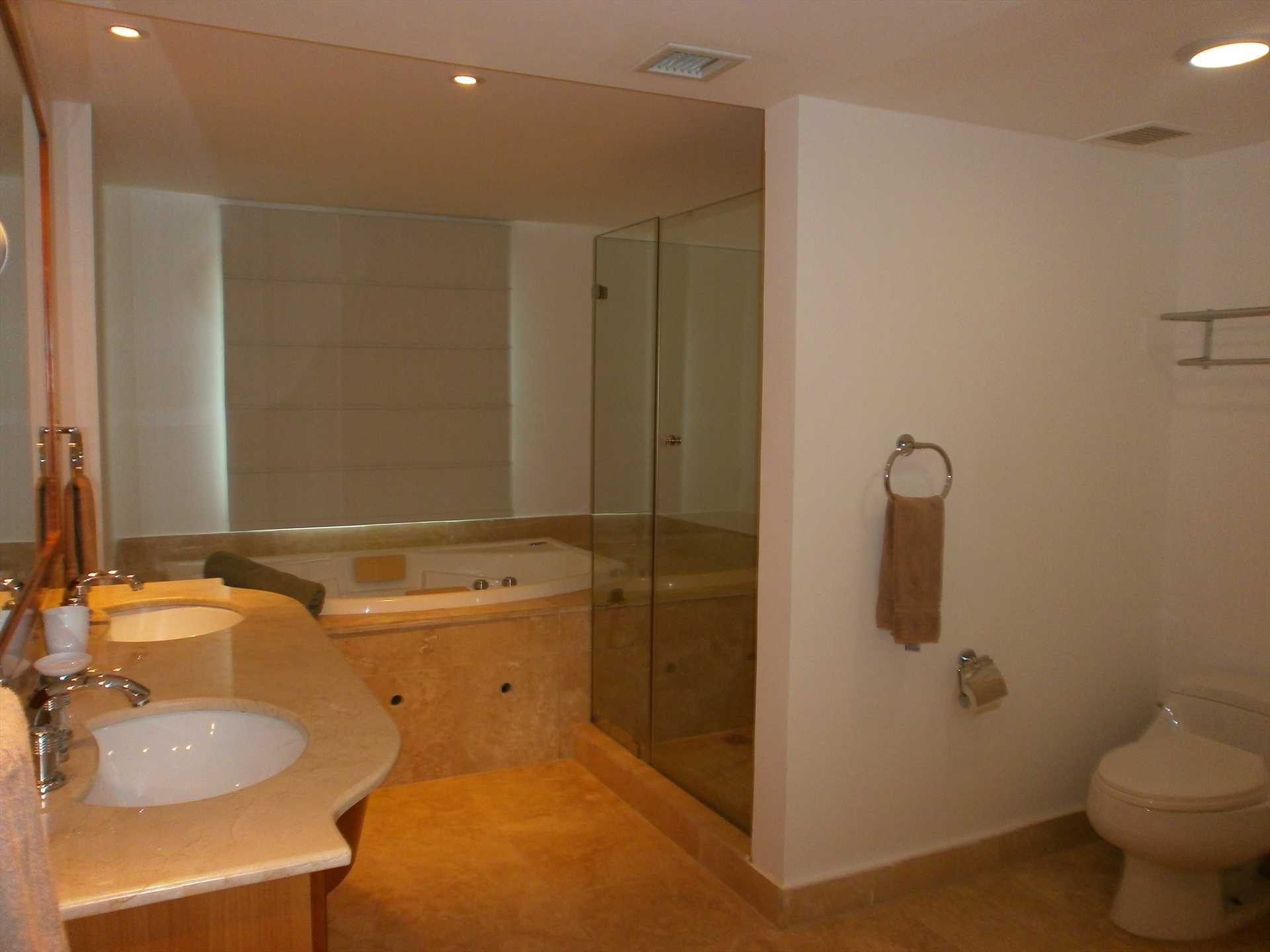 Spacious and modern full en-suite master bathroom with glass-enclosed shower and a private indoor spa/Jacuzzi.