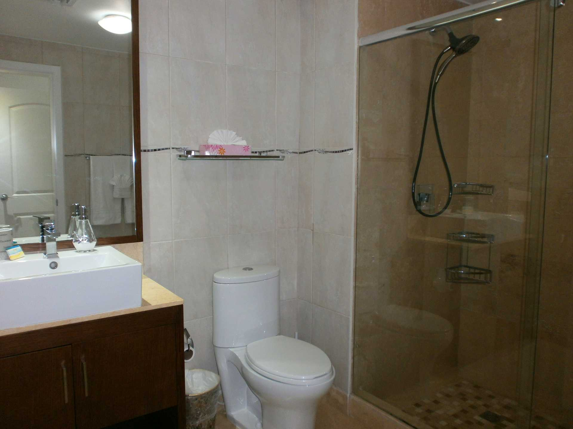 Full modern master bathroom with glass-enclosed shower.
