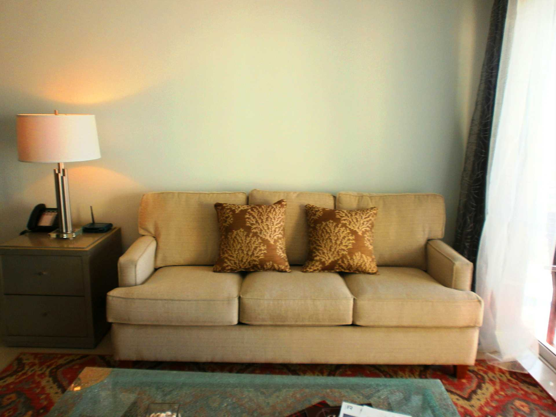 Queen-size sofa bed in living area.