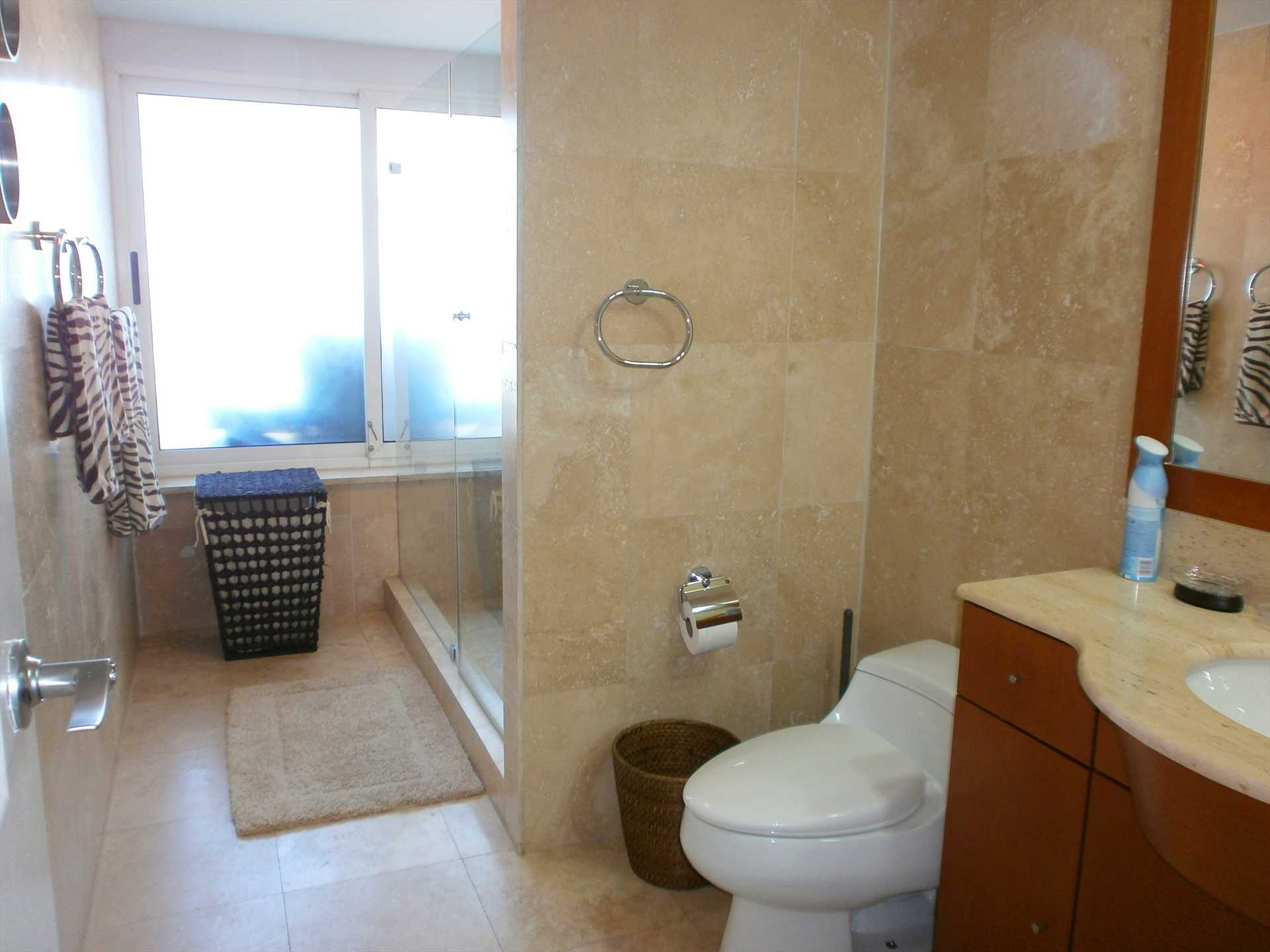 Master full-size bathroom with glass-enclosed shower.