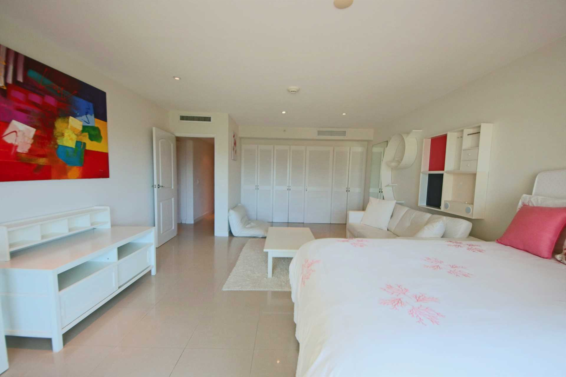 Second bedroom with queen-size sofa-bed and abundant closet space