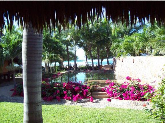 View from the Palapa Lounge and Living room