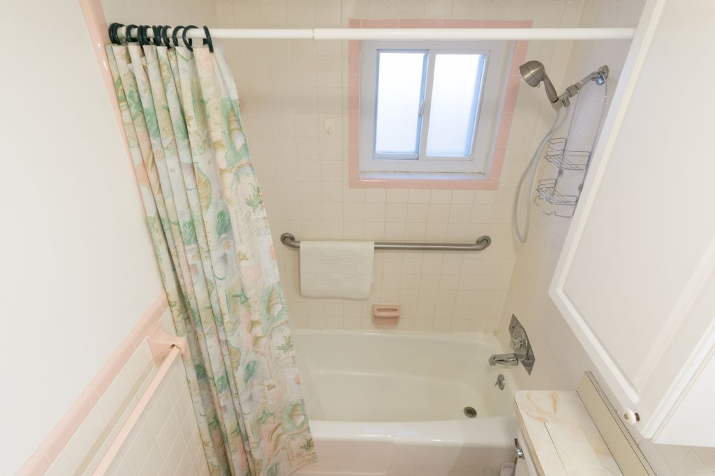 Bathroom tub with shower