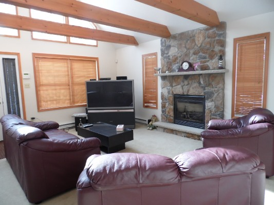 Living room - Leather sofas - TV - FirePlace - Exposed Beams - Jack Frost