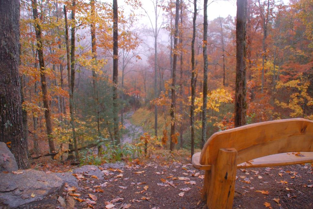 20) Fall view along the hiking trail