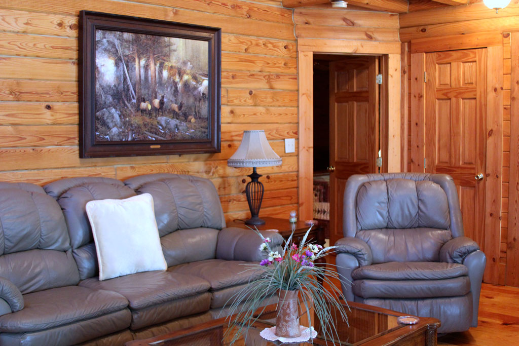 Mountain dew lake house place to stay on vacation 4 for Watershed cabins lake fontana view
