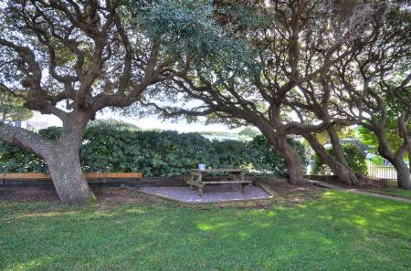 Front Yard picnic area