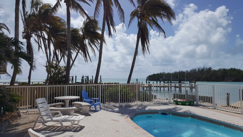 view from pool deck 2018