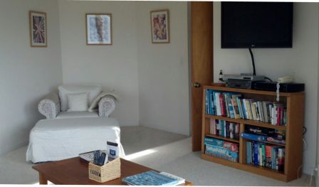 TV room downstairs stocked with books and games
