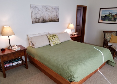 Master suite with king bed, on same level as great room.