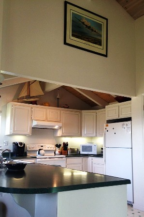 Spacious open kitchen, high ceilings & natural light invite