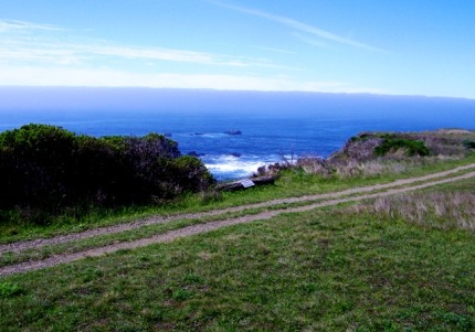 The nearby bluff top trail with crashing ocean views