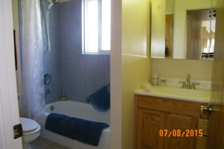 Guest bath with shower and tub.