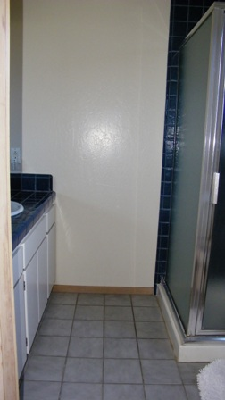 Guest bath with stall shower.