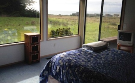 views of the daffodils and ocean from the guest bedroom