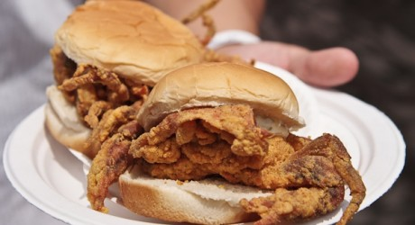 Soft Shell Crab Festival in Port Royal, Beaufort Area of South Carolina!