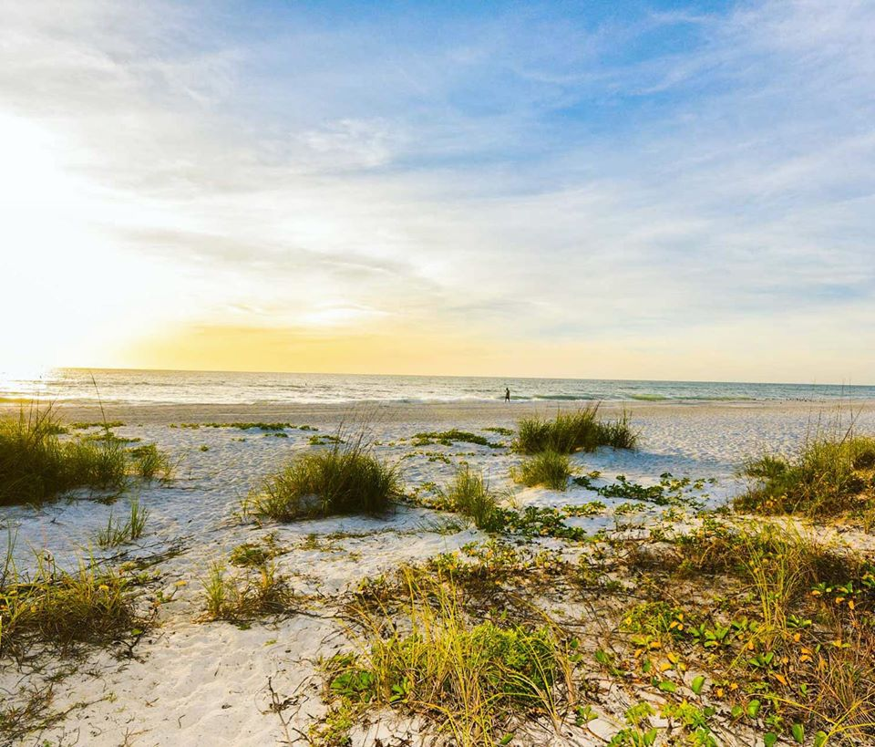 Why You Need To Visit Anna Maria Island