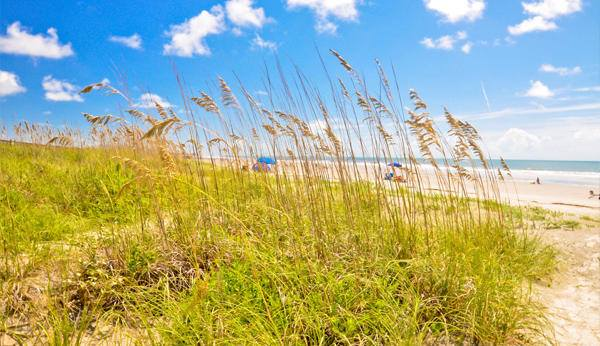 Things to do in Isle of Palms South Carolina