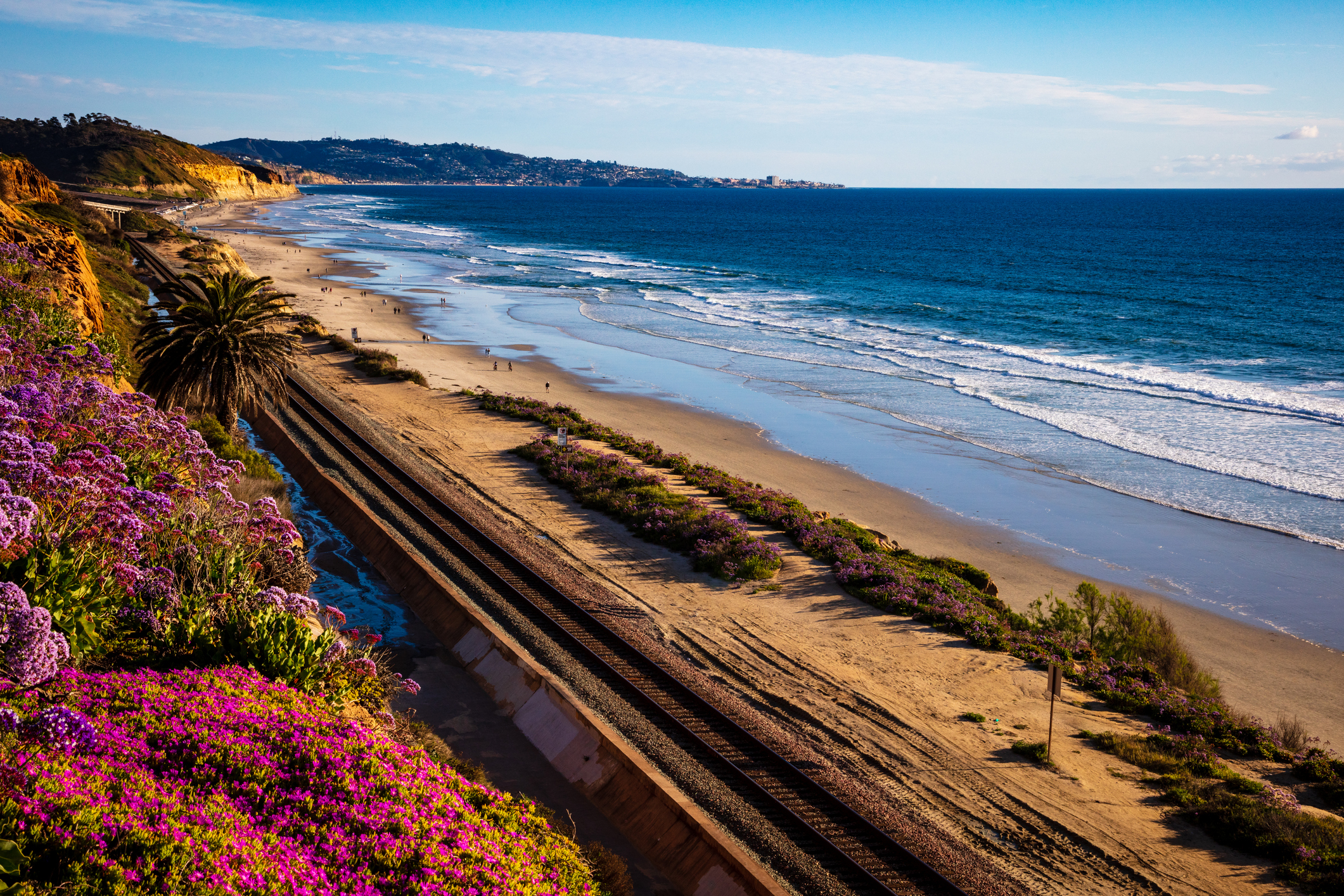 Things to do in Del Mar California