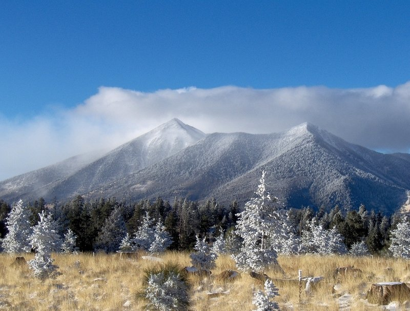 Things to do in Flagstaff Arizona