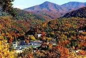 Pigeon Forge Tennessee Travel Guide
