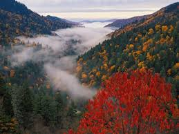 Things to do in Great Smoky Mountains Tennessee Tennessee