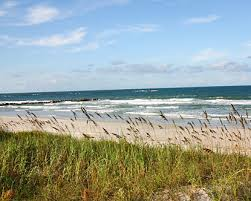 Things to do in New Smyrna Beach Florida